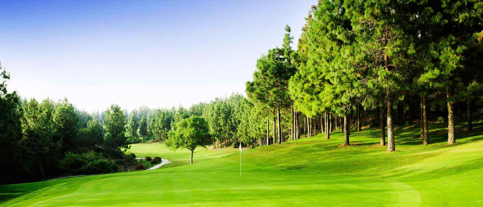 Golf and green fees