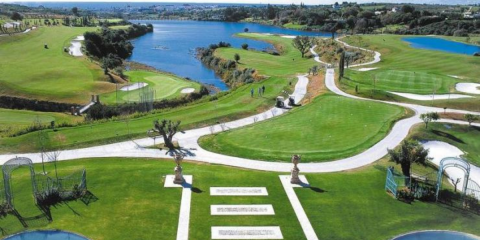 Picture of Flamingos Golf