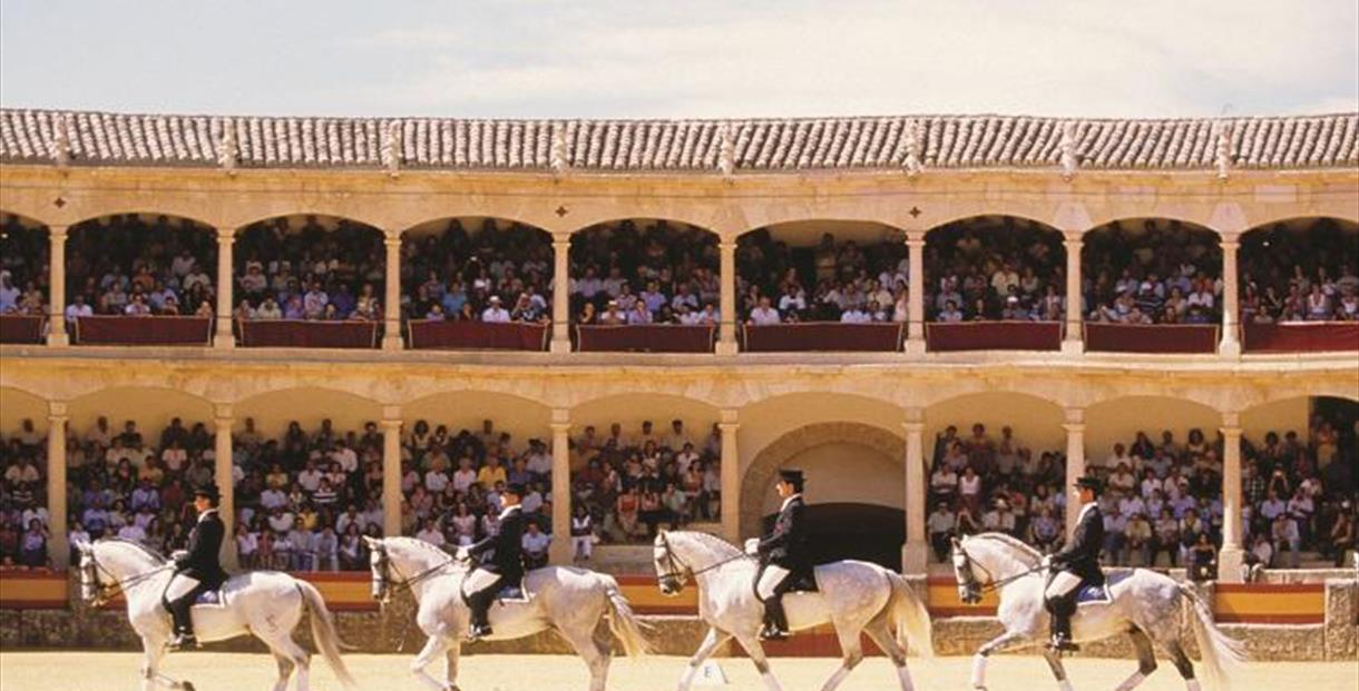 Ronda Bullring - Bullfighting - Culture Lovers - Costa del Sol Málaga