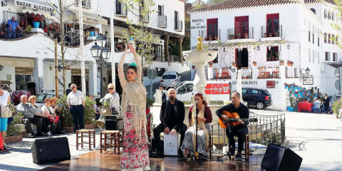 Picture of Tours in Malaga