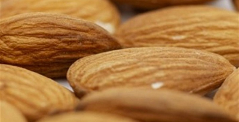 Day of the Almond
