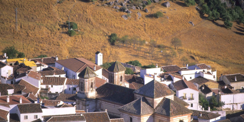 Picture of Alpandeire